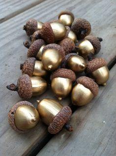 25 ganz gold farbige echte dekorative Eicheln