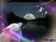 Wolf Design  I added the Wolf to the background. I used Pizap and Blingee to complete this image