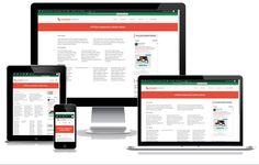 eVision Responsive Column (Plugin) – eVision Themes
