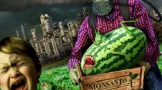 Here's a List of Over 400 Companies that AREN'T Using GMOs in their Products