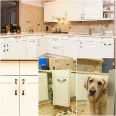#kitchendesign #kitchen #kitchenfurniture #mobila #mobiladebucatarie #bucatarii #bucatariiclasice #classicalkitchens Classical Kitchen, Kitchen Cabinets, Furniture, Studio, Design, Home Decor, Decoration Home, Room Decor, Cabinets