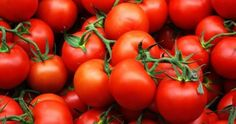 Producers and exporters in Turkey are content with the increase in tomato exports for the first five months of the year. Fresh Fruits And Vegetables, Growing Vegetables, Vegetables Garden, Gin Soaked Raisins, List Of Veggies, Tomato Vine, Oil For Dry Skin, Deli Food, Wrinkled Skin
