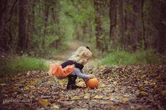 Love fall pics.