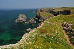 Minnows Islands, Cornwall