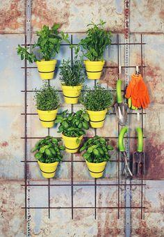 Gör en egen örtträdgård för uteplatsen. DIY