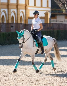 Just love the Turquoise Prosport dressage matchy set , don't you ?