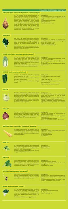 Vergeten groenten - GroentenInfo   via plantaardig.com