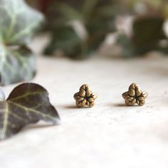 Tiny Ivy Earrings  Gold Vine Studs  Sculpted by GwydionsGarden