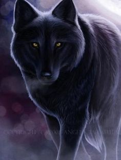 The pack of Star The wolves of the night time - Anime Wolf Anime Wolf, Wolf Spirit, My Spirit Animal, Beautiful Wolves, Animals Beautiful, Tier Wolf, Lobo Anime, Shadow Wolf, Alpha Wolf
