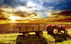 Wallpaper: farm wallpaper