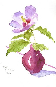 rose of sharon sketch done in San Francisco Watercolor Paintings For Beginners, Watercolor Pictures, Watercolor Artwork, Watercolor And Ink, Watercolor Trees, Watercolor Portraits, Watercolor Landscape, Art Floral, Watercolor Flowers Tutorial