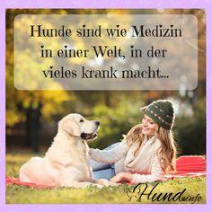 Auch wieder ein toller Spruch zum Thema Hund: Hunde sind wie Medizin in einer Welt, in der vieles krank macht  Viele weitere Hundesprüche gibt es hier shares Facebook Twitter Google+ Pinterest Xing
