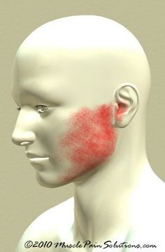 Jaw Muscle Pain -- TMJ Tips: In order to keep the jaw joint functioning healthily you may perform some pressure applications and massages at home. Putting pressure on the nerves of the jaw joint located right below the ears and opening and closing the mouth at the same time can help increase its mobility. Get more TMJ facts and help at http://www.healthrepaircenter.com/TMJ/index.html