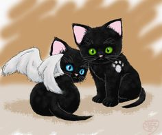 Dean and Cas as kittens by Yumezaka.deviantart.com on @deviantART