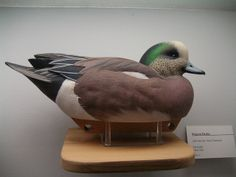 Enjoy a visit to the Ward Museum of Wildfowl Art to see the beautiful, intricately carved wooden decoys dating from early settlers to today
