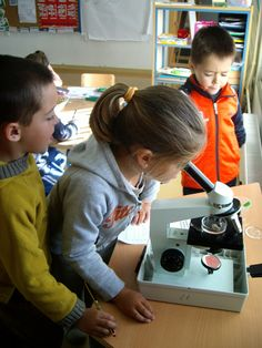 Los insectos son animales pequeños que están en todas partes y por esta razón son accesibles para su estudio y despiertan la curiosidad de... Small Animals, Insects, Science Projects, Life Cycles, Getting To Know