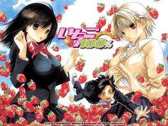 - Title : Ichigo 100%  - Other Titles : Strawberry 100%, Ichigo Hyaku Pāsento  - Genre : Harem comedy, Romance  - Year : 5 April 2005 – 21 June 2005  - Format : episodes (~24min.)
