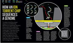 The Gene Machine and Me -- Ion Torrent's chip-based genome sequencer is cheap, fast, and poised to revolutionize medicine Next Generation Sequencing, Dna Molecule, Teaching Science, Science Nature, Back To School, Medicine, Spectrum, Commercial, Magazine