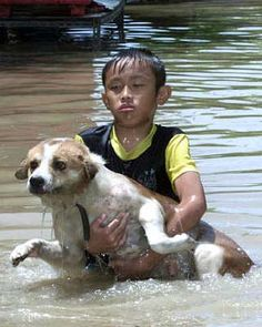 Boys carries dog to safety during flood petinsurance.com