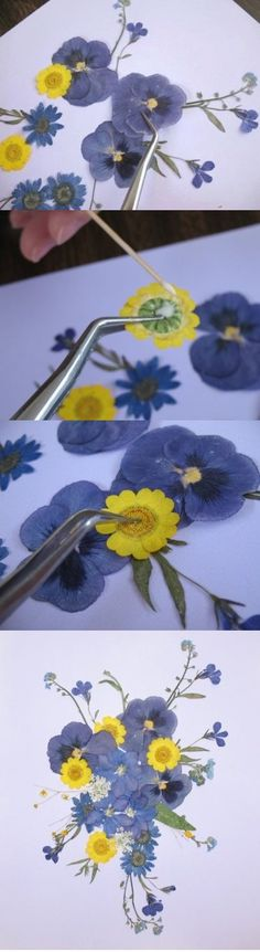 If you're new to the world of pressed flowers, don't feel intimidated -- working with pressed flowers can be a lot easier and more enjoyable than you think! One