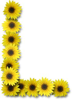 free sunflower page borders for word google search borders rh pinterest com Printable Sunflower Border Clip Art Sunflower Clip Art Borders & Dried Corn