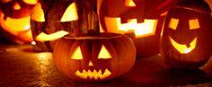 Sie möchten einen Halloween-Kürbis schnitzen? Dann haben wir das Richtige für Sie: Lustige, gruselige und schaurige Kürbisgesichter als Schnitzvor