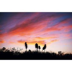 #tunquen #algarrobo #valparaiso #chile #southamerica #latinamerica #pacific #twighlight #sunset #sunshine #nature #travel by leogarbutt