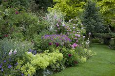 Massif romantique pour 3 m²: Rosa x gallica Versicolor - Rosier ancien… Beautiful Flowers Garden, Love Garden, Dream Garden, Garden Art, Beautiful Gardens, Garden Design, Outdoor Plants, Outdoor Gardens, Garden Online