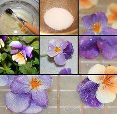 Making Sugared Flowers (pansies). First, it is important to know which flowers are edible. Make sure to look for flowers grown without pesticides if your guests will consume these flowers. Arm yourself with plenty of patience and pick a great podcast to listen to as you work. To get enough flowers for a cake, plan on 2-3 hours for sugaring. When you are ready to try sugaring flowers, here's what you'll need...