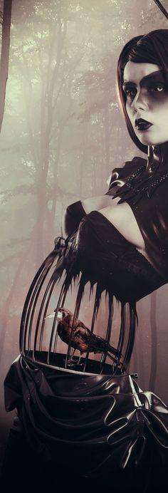 Lady Crow by Carole Sanson, via Behance