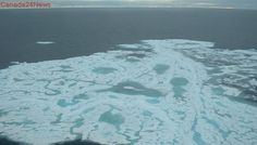 'Bound to have an impact on global climate': Arctic sea ice drops to 8th lowest summer level