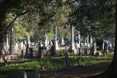 Oconee Hill Cemetery, Athens, GA