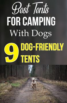 Camping with dogs hacks – See 9 best tents for camping with dogs! All dog owners… Camping with dogs hacks – See 9 best tents for camping with dogs! All dog owners…,Camping Hacks Camping. Camping Needs, Best Tents For Camping, Cool Tents, Camping Style, Camping Games, Camping With Kids, Camping Equipment, Tent Camping, Campsite