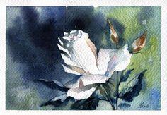Original White rose flower watercolor by TatsianaZayatsArt on Etsy