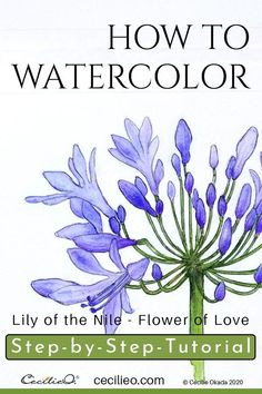 How to Watercolor Lily of the Nile, the Flower of Love – Cecilie Okada Design Watercolor Art Lessons, Watercolor Paintings For Beginners, Watercolor Tips, Watercolor Techniques, Watercolor Cards, Watercolour Painting, Watercolours, Watercolor Flowers Tutorial, Step By Step Watercolor