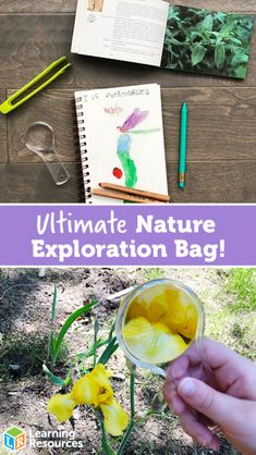 Explore the outdoors with this DIY Ultimate Nature Exploration Bag! Toddler Scavenger Hunt, Mini First Aid Kit, Mini One, Nature Journal, And So The Adventure Begins, Field Guide, Kids Bags, Pencil Pouch, Learning Resources