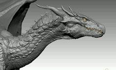 Magical Creatures, Fantasy Creatures, Arma Steampunk, Dragon Anatomy, Beautiful Dragon, Dragons, Dragon Artwork, Dragon Pictures, Fantasy Paintings