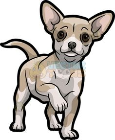 A cute and adorable Chihuahua : A small dog with light beige and white fur big . Chihuahua Tattoo, Chihuahua Drawing, Chihuahua Art, Felt Animals, Baby Animals, Cute Animals, Cute Animal Drawings, Animal Sketches, Dog Signs