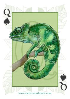Animals and Birds ‹ Melissa Washburn  Chameleon playing card illustration: watercolor, ink, and digital  Animal illustration
