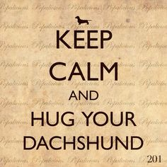 Keep calm and hug your dachshund