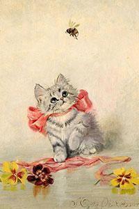 Body Soap: Kittens