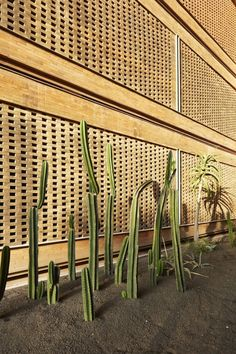 Katamama: A Bali Hotel Designed by Indonesian Artisans - Design Milk