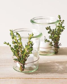 Votives with Herbal Accents  Add a woodsy element to candle holders.