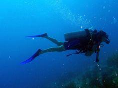 Joseph Armato Getting Your Scuba Diving Certification