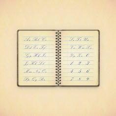 Create a Vintage Notebook Illustration in Adobe Illustrator — Tuts