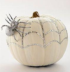 white pumpkin spider