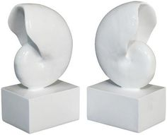 Three Hands Resin Nautilus Bookends, Set of 2 - White