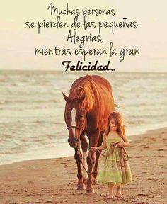 Muchas personas se pierden de las alegrías, mientras esperan la felicidad...
