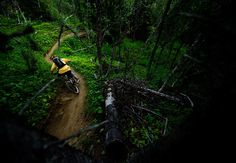 #bike #Bicycle #Mountainbike #biking