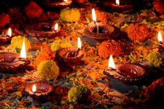 Clay diya lamps lit during diwali celebr... | Premium Photo #Freepik #photo #background Festival Photography, Amazing Photography, Phone Photography, Diya Photos, Hindu New Year, Happy Diwali Photos, Diya Lamp, Light And Shadow Photography, Diwali Festival Of Lights